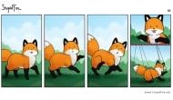 Internet Spotlight: Fox Fires[VIDEO]